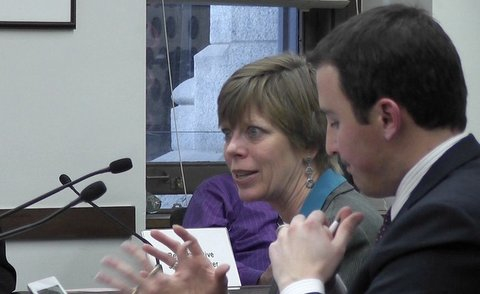 Colorado Auditor Dianne Ray testifies Thursday at a House hearing. Next to her is bill co-sponsor, Rep. Dan Nordberg, R-Colorado Springs.