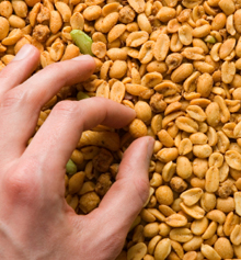 Questions abound on whether avoiding peanuts prevents or contributes to development of allergies.