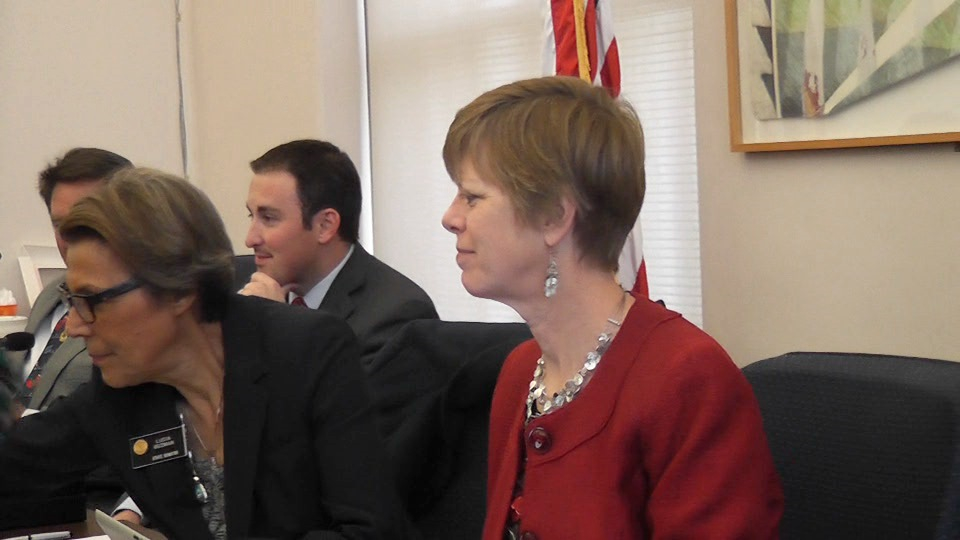 Colorado Auditor Dianne Ray right with Rep. Dan Nordberg, R- Colorado Springs and audit committee chair, Sen. Lucia Guzman, D-Denver, at a meeting Monday of the Legislative Audit Committee.
