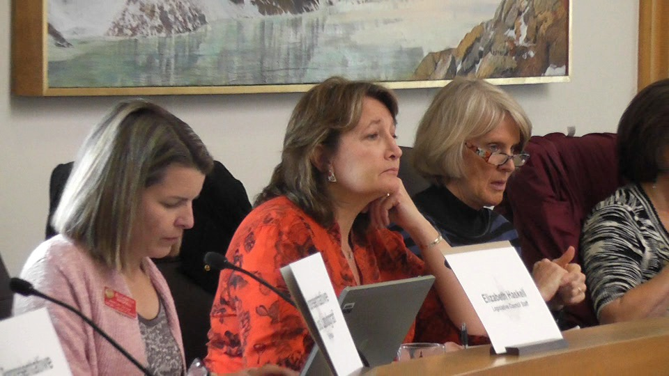 Sen. Ellen Roberts, R-Durango, grilled health exchange managers and board members. She said she hasn't decided yet whether Colorado's exchange is sustainable.